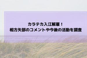 カラテカ入江解雇 相方矢部