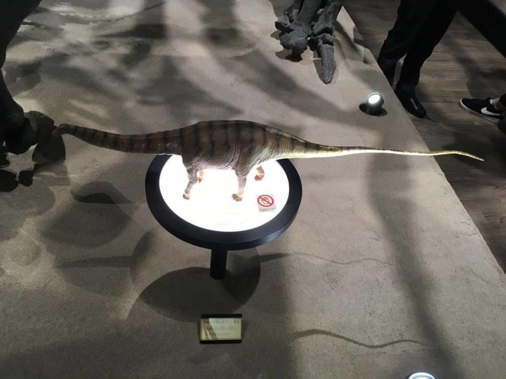 御船町恐竜博物館 フィギュア