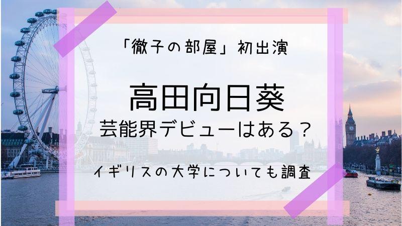 高田向日葵 芸能界 デビュー 大学