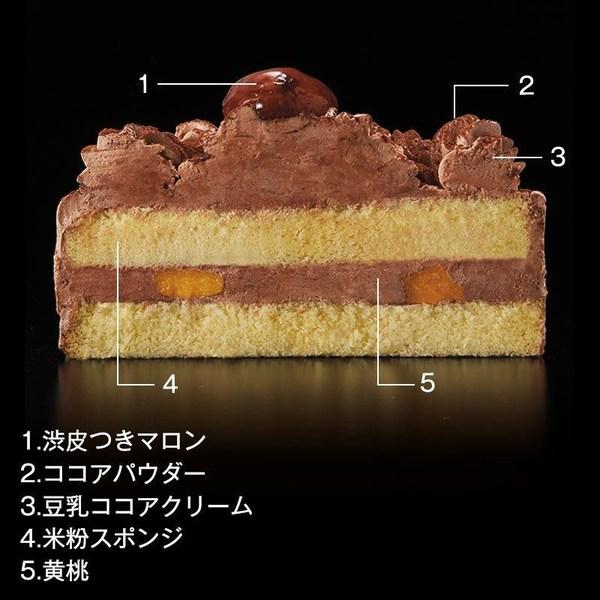 イトーヨーカドー クリスマスケーキ アレルギー対応(ココア)  断面